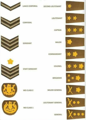 BL Epaulette with Ranks